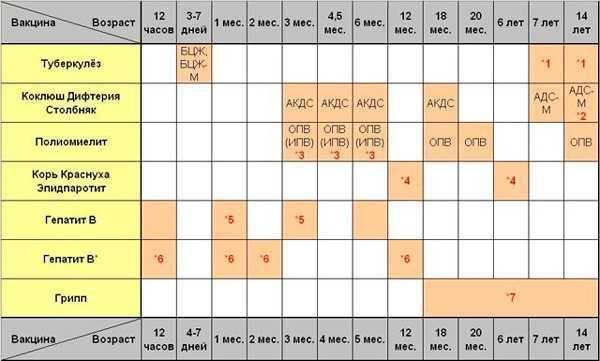 Ревакцинация акдс: отличия от простой прививки, график проведения и противопоказания