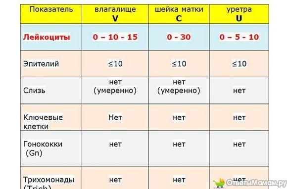 ᐉ мазок на флору у женщин на ранних и поздних сроках беременности: норма лейкоцитов, причины повышения, лечение. повышение количества лейкоцитов в мазке при беременности - ➡ sp-kupavna.ru