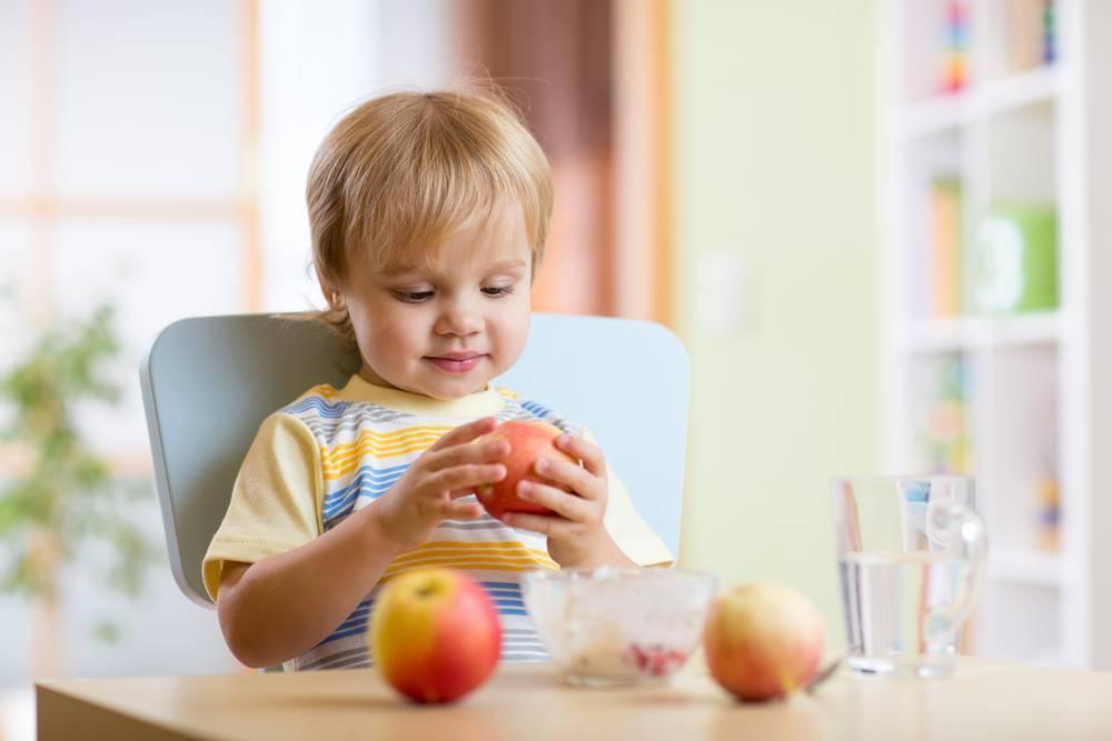 Как научить ребенка жевать твердую пищу?
