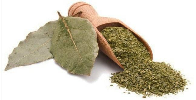 Народные средства лечения сыпи от аллергии
