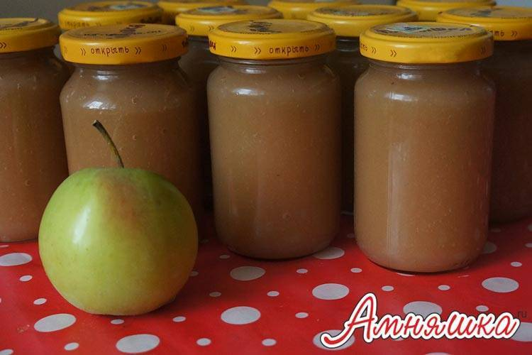 Как приготовить яблочное пюре своими руками для прикорма грудничка: рецепты из свежих яблок и заготовки на зиму. пюре из яблок: рецепты