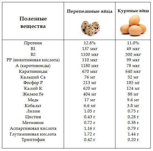 Яичница и омлет для кормящей мамы