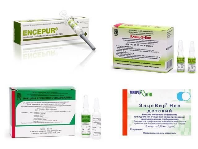 В каких случаях нужна прививка от клещевого энцефалита