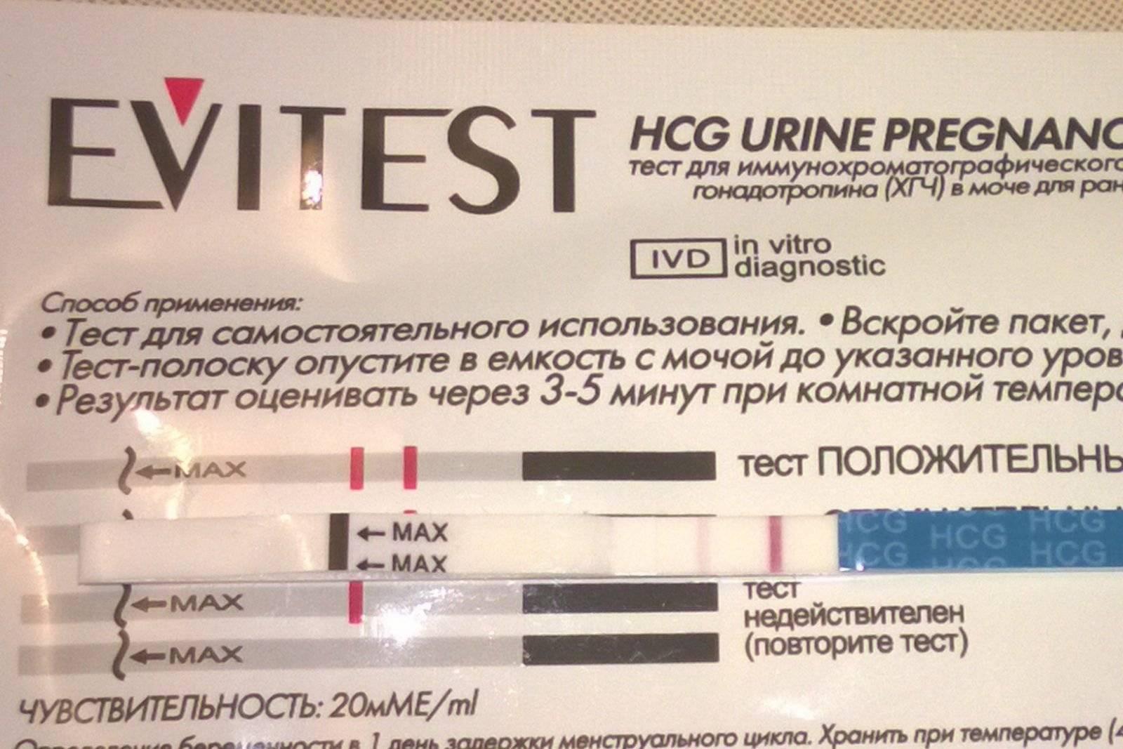 Тест на беременность evitest какой стороной опускать в мочу. horoshayaberemennost.ru