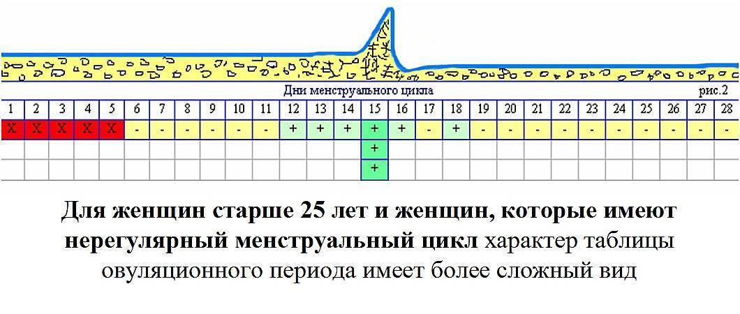 За сколько дней до овуляции можно забеременеть: как рассчитать правильные дни?