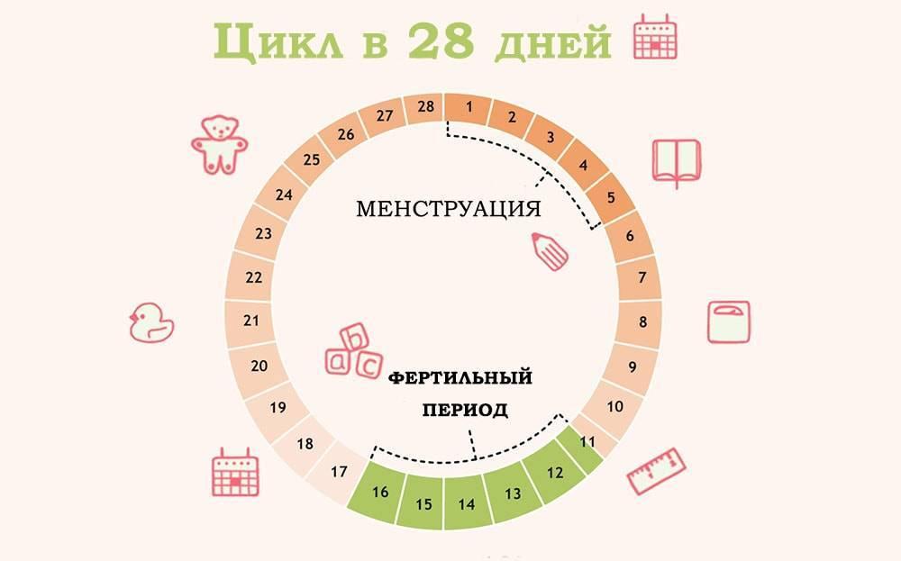 Через сколько дней начинаются месячные после овуляции? на какой день они приходят и от чего это зависит?